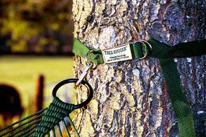 Tree Hugger Tree Straps